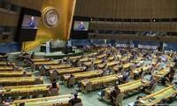 Thúc đẩy và bảo vệ quyền con người là ưu tiên cao nhất, là mục tiêu cuối cùng và là động lực của sự phát triển bền vững