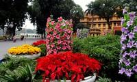 Pemandangan kota Hanoi sebelum Hari Raya Tet