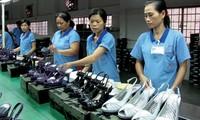 Pertukaran dagang antara Vietnam dan Cile mencapai rekor