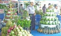 Vietnam memacu ekspor untuk menuju ke rangkaian nilai tambah