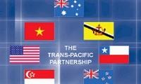Negara-negara peserta gagasan TPP mengadakan perundingan kembali