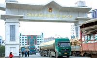 Ekspor hasil pertanian dan kehutanan – indikasi-indikasi positif dari koridor internasional Lao Cai