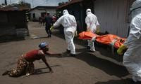 WHO menegaskan tidak ada kasus terinfeksi baru dari virus Ebola pada pekan lalu di Afrika Barat