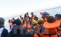 Belgia akan menerima para pengungsi Suriah pertama yang datang dari Yunani