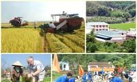 Berupaya sampai tahun 2020 mencapai 50% jumlah kecamatan yang mencapai patokan pedesaan baru