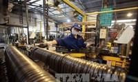 """Vietnam merupakan """"titik cerah"""" di kawasan tentang penyerapan investasi"""