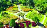 Memperkenallkan Obyek Wisata Sapa, satu destinasi yang disukai banyak wisatawan pada musim Semi
