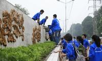 Kaum pemuda Ibukota Hanoi dengan banyak aktivitas sukarela  yang kreatif