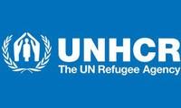 PBB merasa cemas akan gelombang pengungsi di Suriah