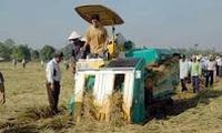 PM urges RoK to continue assisting Vietnam in agriculture