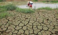 Vietnam joins global efforts to respond to climate change
