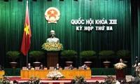 NA passes resolution to dismiss deputy Dang Thi Hoang Yen