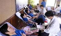 Blood donation day gets underway in Hanoi