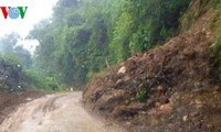 Localities clean up after Jebi storm