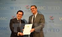 Vietnamese Ambassador presents credentials to WTO Director General