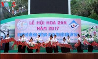 2017 Ban Flower Festival opens in Dien Bien