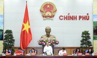 Promoting Vietnam Red Cross's role in ensuring social welfare