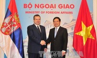 Vietnamese, Serbian foreign ministers hold talks