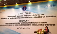 Global nutrition movement promoted in Vietnam