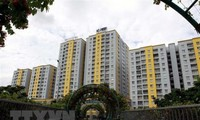 Global investors eye Vietnam's domestic real estate market: The Business Times