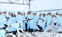 PM visits tra fish hi-tech production model in An Giang