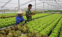 Agro-seafood-forestry processing to be improved