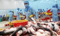 Vietnam, potential market of Tra fish