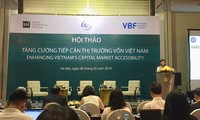 Government seeks incentives on access to Vietnam's capital market