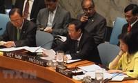 42 years of UN membership, Vietnam sets sail