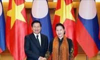 Vietnam, Lao leaders share experience on legislative body-government coordination