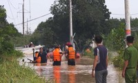 Vietnam, Japan seek measures to mitigate risks of natural disasters
