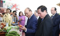 Prime Minister attends Tra Vinh province's investment promotion conference