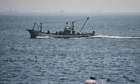 Vietnam takes citizen protection measure after ship collision off Japan
