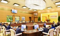 NA Standing Committee's extraordinary meeting discusses solutions to COVID-19