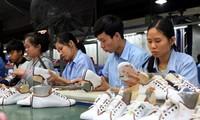 Vietnam, US seek to promote post COVID-19 trade of footwear