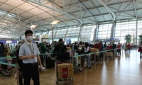 340 Vietnamese citizens repatriated from Republic of Korea