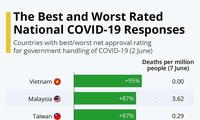 Vietnam rated best COVID-19 response country: YouGov