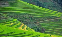 Sapa, Ninh Binh listed among 14 up-and-coming destinations in Asia to visit