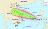 Central Vietnam battens down the hatches against storm Noul