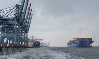 Cai Mep port welcomes one of world's largest container ships