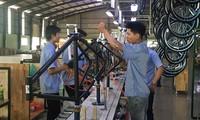 Binh Duong fights origin fraud