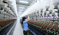 Fitch Solutions forecasts Vietnam's GDP to grow 6.5% per year