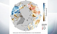2020 is the hottest year on record in Europe