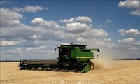 Australia moves to sue China to WTO over barley import duties