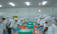Seafood export forecast to achieve 9 billion USD target for 2021
