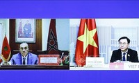 NA Chairman talks online with Speaker of Morocco House of Representatives