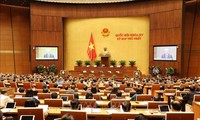 15th National Assembly improves operational efficiency to meet development needs