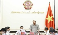 President works on operation model of Central Steering Committee for Judicial Reform