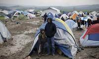 欧盟就与土耳其难民安置协议形成统一立场