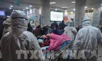 中国湖北省新型冠状病毒感染的肺炎死亡病例猛增